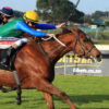 ZOUSTAR FILLY SCORES AT KENILWORTH Image